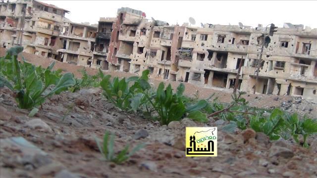 Bild: Trotz anhaltender Belagerung leben noch 8000 Menschen in Moadamyeh